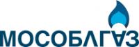 Логотип компании Домодедовская служба газового хозяйства